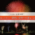 いよいよ夏本番!絶対に行きたい静岡の夏祭り8選まとめ!2015年度版